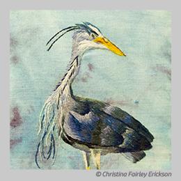 Cheeky Blue Heron by Christina Fairley Erickson