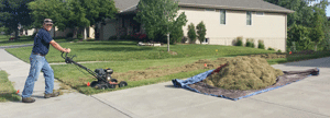 Professional Lawn Care and Lawn Mowing Omaha
