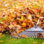 Omaha fall clean-up raking leaves & picking up after storms.