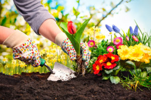 spring cleanup, landscaping company omaha