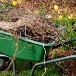 spring yard cleanup with Nebraska Yard Care