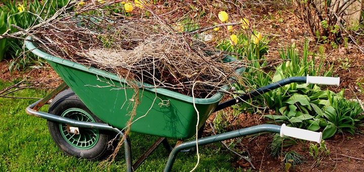 spring yard cleanup with Nebraska Yard Care