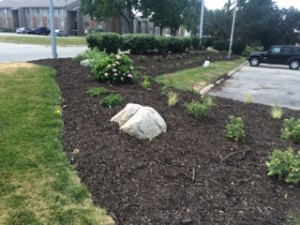 Comfort Inn, Commercial Landscaping, June 2016: Landscapers Omaha