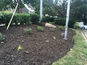 Comfort Inn, Commercial Landscaping Design Omaha, June 2016: Landscapers Omaha