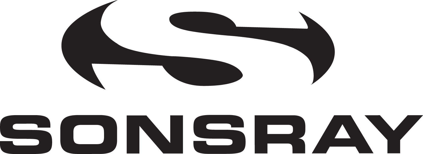 2014: Sonsray Inc Is Founded