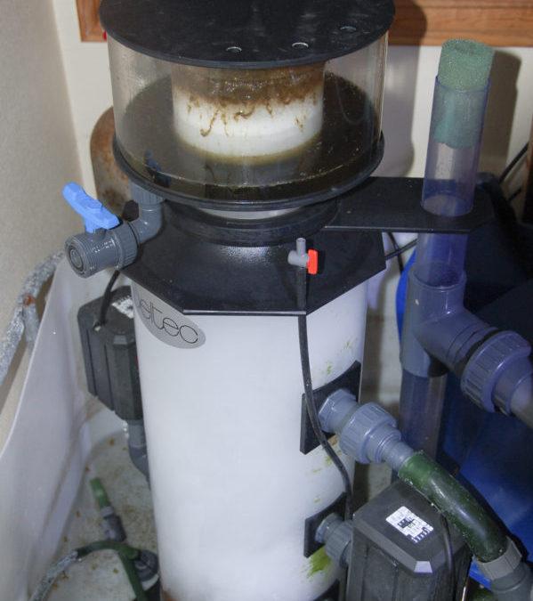 Reef aquarium filtration