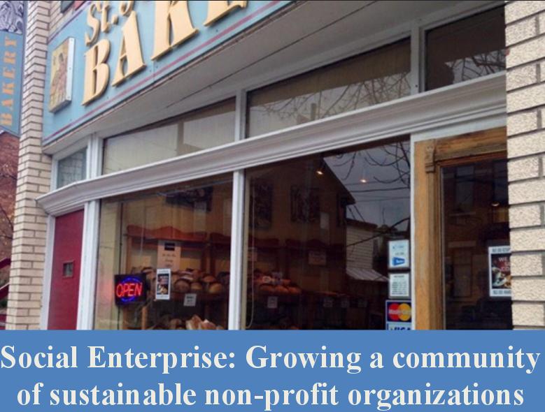 Social Enterprise: Growing a community of sustainable non-profit organizations