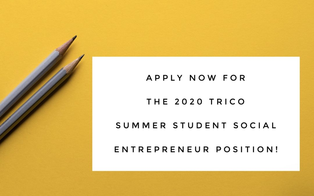 Summer Position Will Pay YYC Student to Work on Their Social Enterprise: Apply Now!