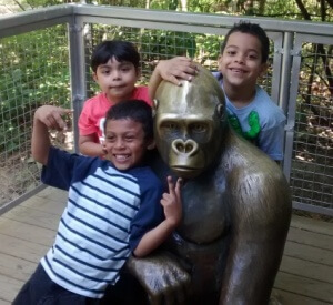 Who´s afraid of a brass gorilla?