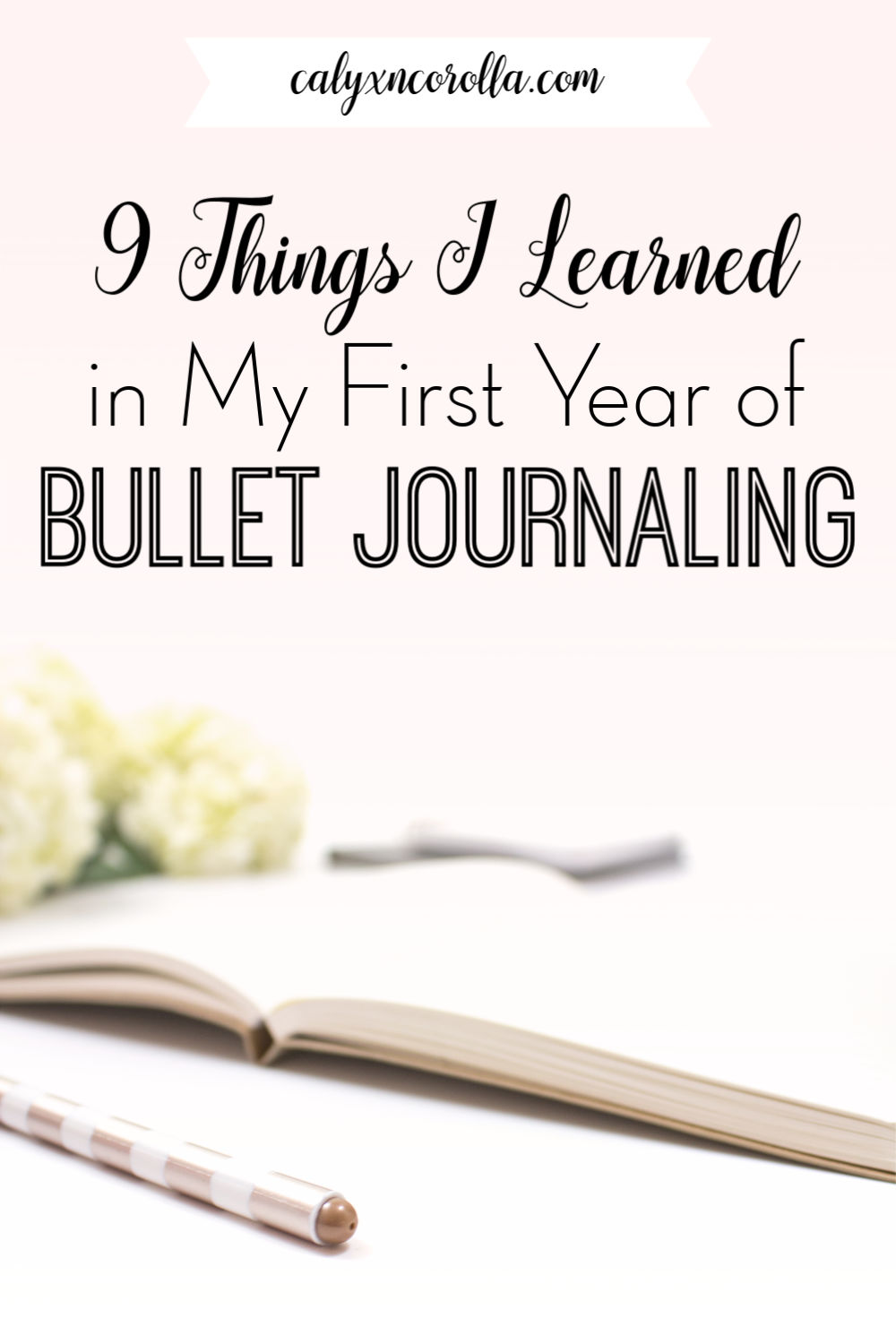 9 Things I Learned in My First Year of Bullet Journaling | Calyx and Corolla