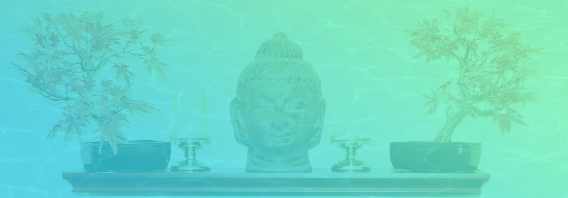 front-page-background-image-buda