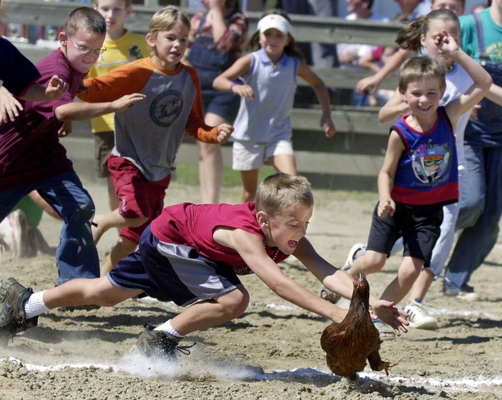 Chicken Flying Contest Geauga County Fair