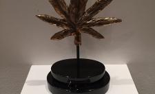 Cannabis-Legalization-e1486411263642.jpeg.jpg-nggid03149-ngg0dyn-225x137x100-00f0w010c011r110f110r010t010