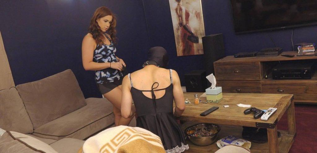 domestic sissy