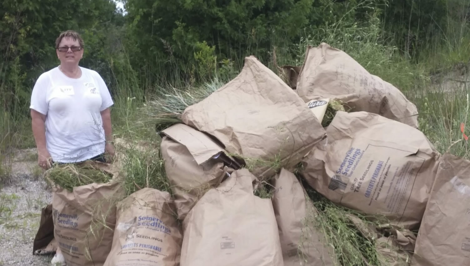 Phrag Spading Day – Huge Success