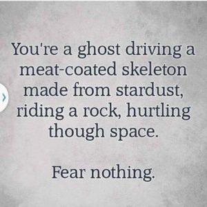 Meat Skeleton