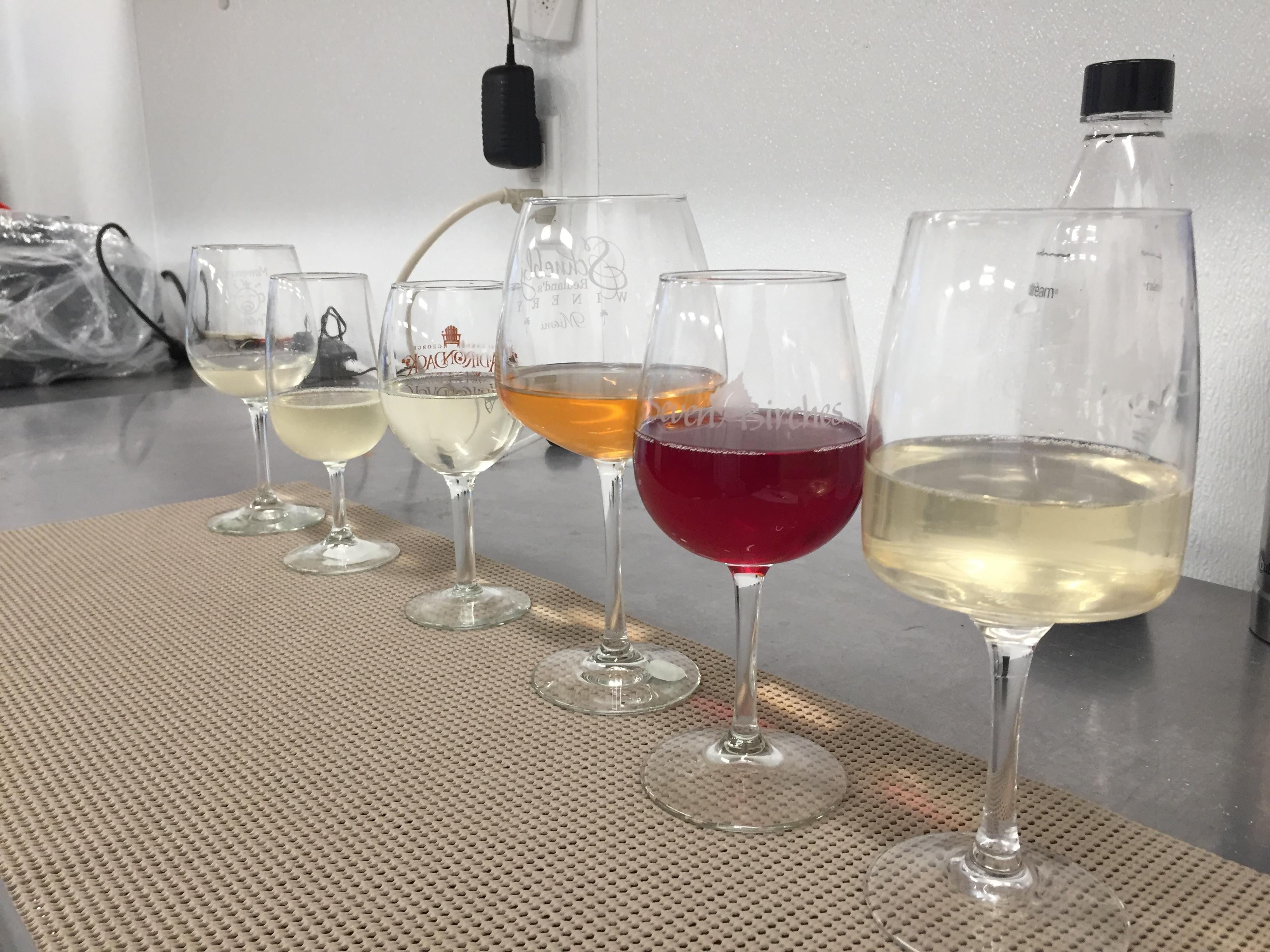 Tasting Wine Like a Regular Person