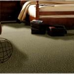 carpet-vail-valley-colorado-maverick-avon_2