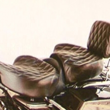 Harley-Davidson FLHR Road King: Day-Long Dual Vinyl Cover with a special Custom Harley Diamonds quilting pattern. HD sissybar backrest pad recovered to match.