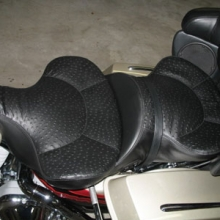 Harley-Davidson Ultra Classic: Dual With Ostrich Inserts