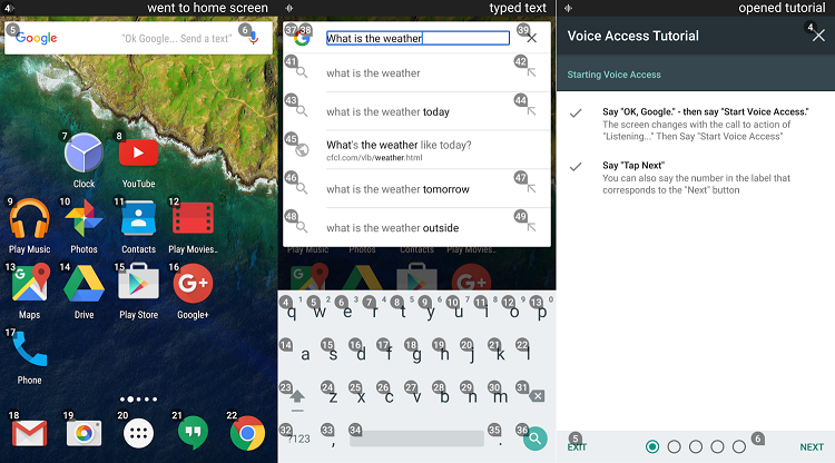Google Voice Access Beta