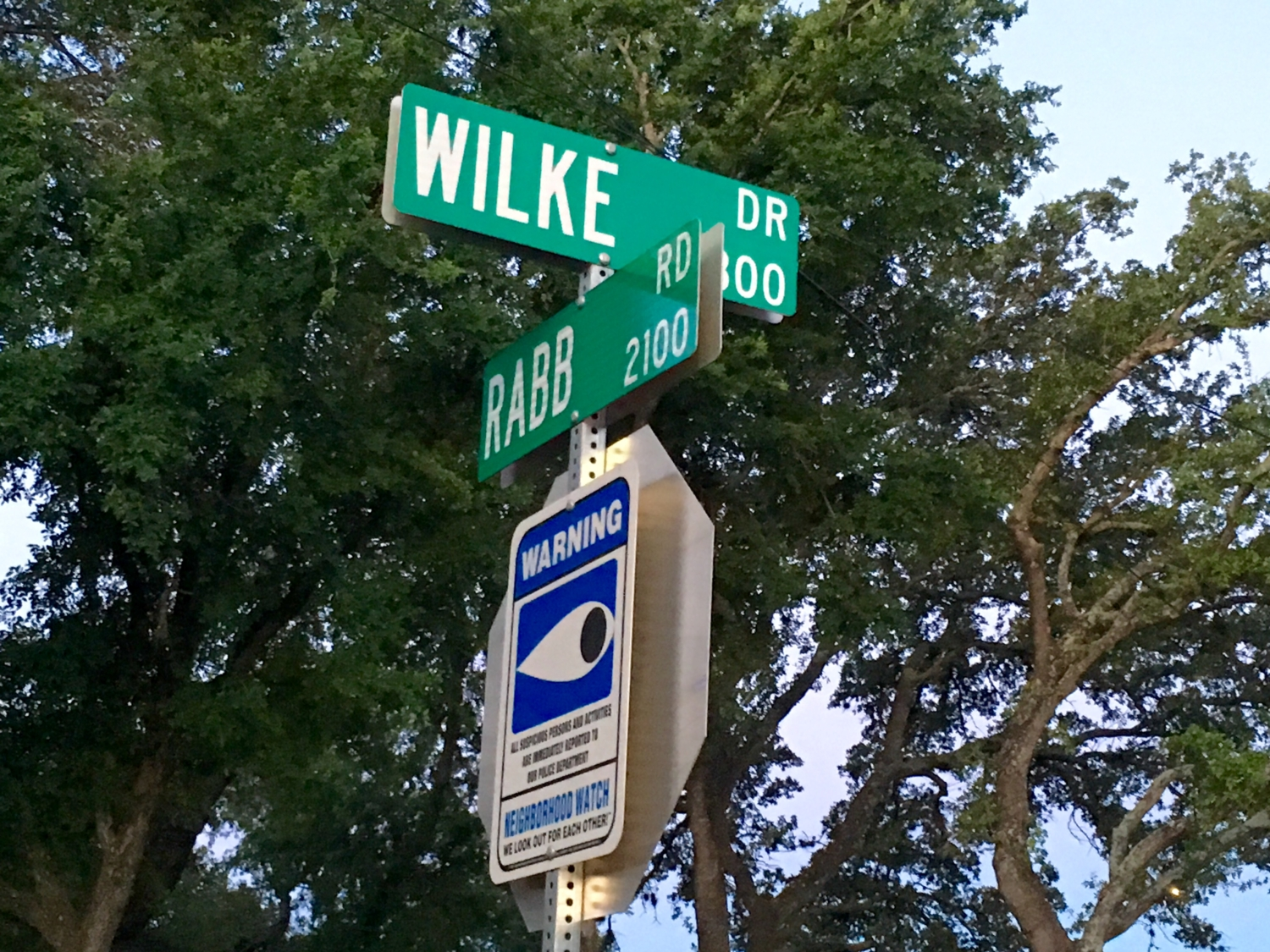 Wilke Drive is one of the High Five Events' staff's favorite Austin hill workout locations.