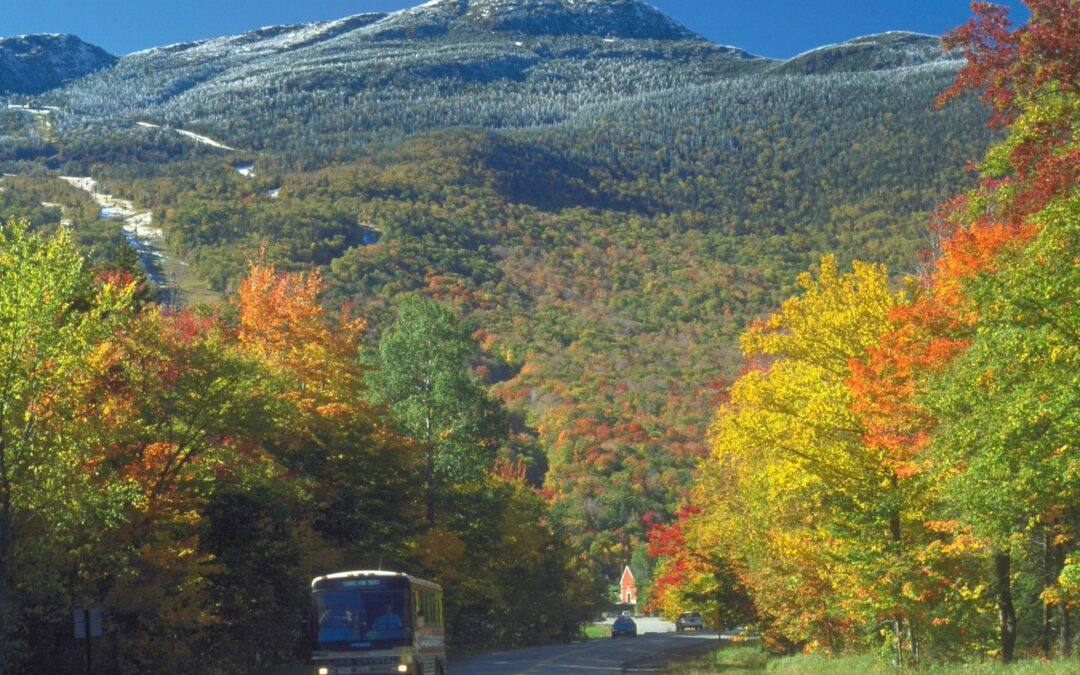 MEANDERING ALONG THE GREEN MOUNTAIN BYWAY