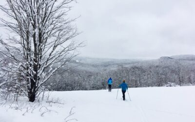 EXPLORE YOUR NEW STATE FOREST THIS WINTER