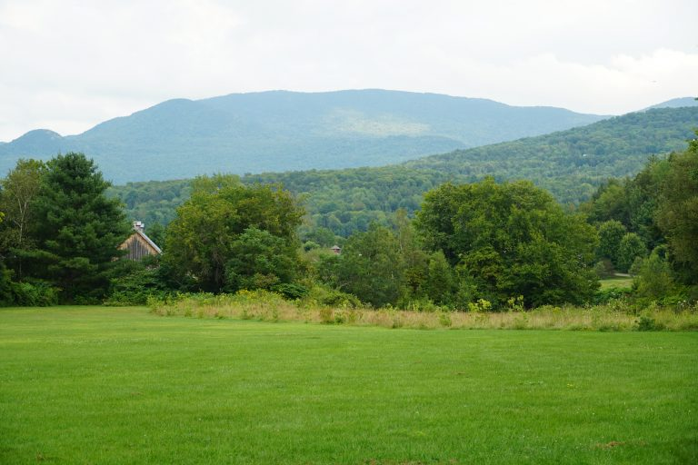 A lush green meadow against a gray sky, with a mountain in the background.
