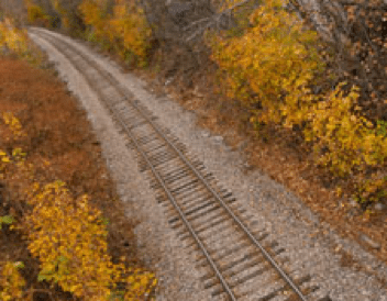 Railroad tracks stretch through a golden yellow forest in fall.