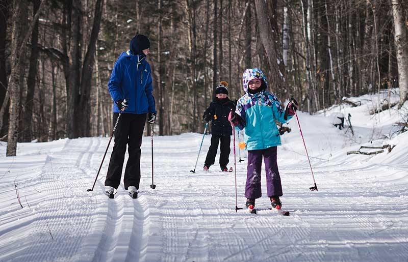 An adult and two kids cross-country ski on a flat wooded trail.