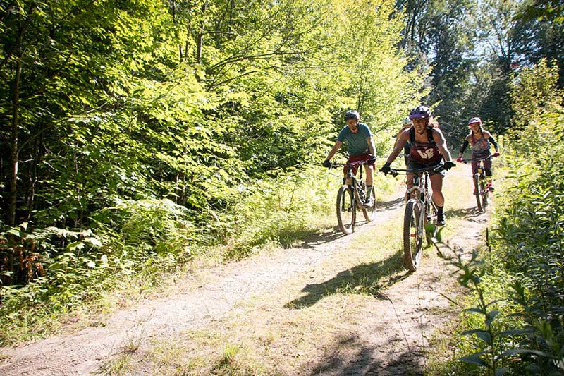 Three young adults ride bikes side-by-side along two dirt tracks along a forest.