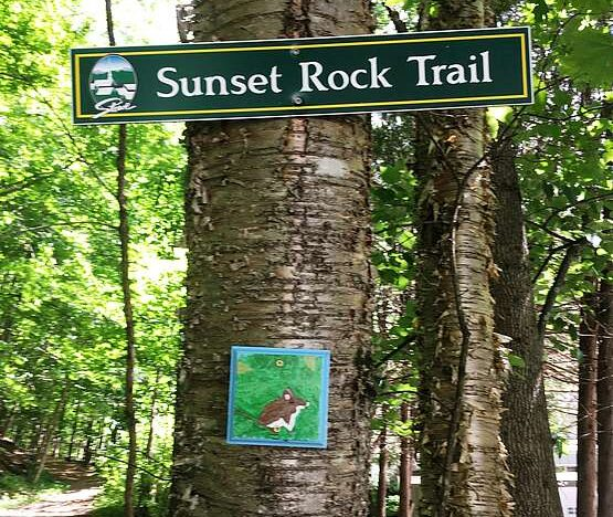 A tree with a trail sign on it points the way to Sunset Rock Trail, while a hand-painted marker is positioned beneath the sign.