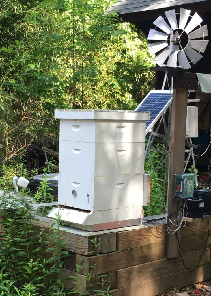 Beehive with PV panels