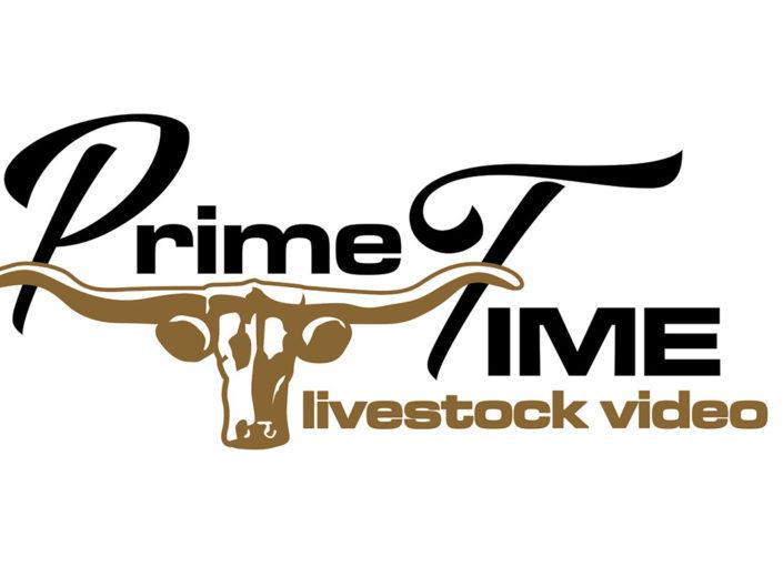 Livestock Business Logo