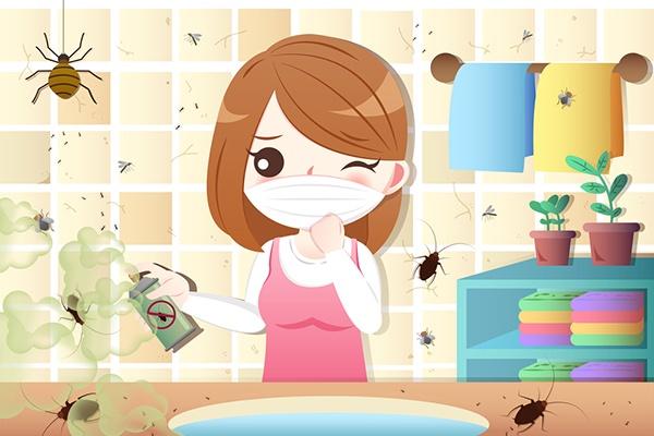 Common-Misconceptions-Of-Pest-In-Your-Home