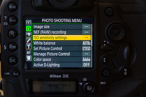 Auto ISO and why I use it