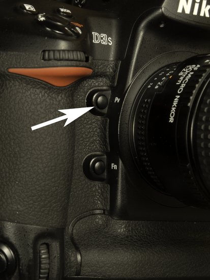 Depth of Field Preview – A tool underused by many photographers