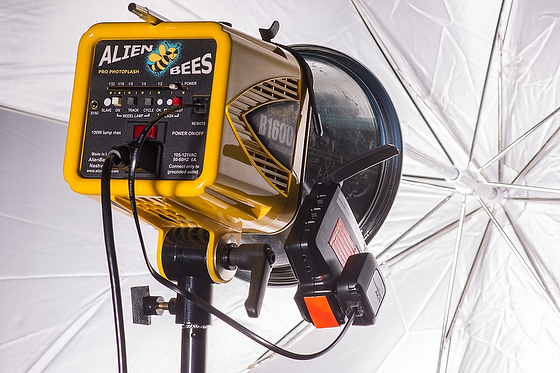 Pocketwizard AC9 a Game Changer with Alienbees High Speed Sync 1/8000
