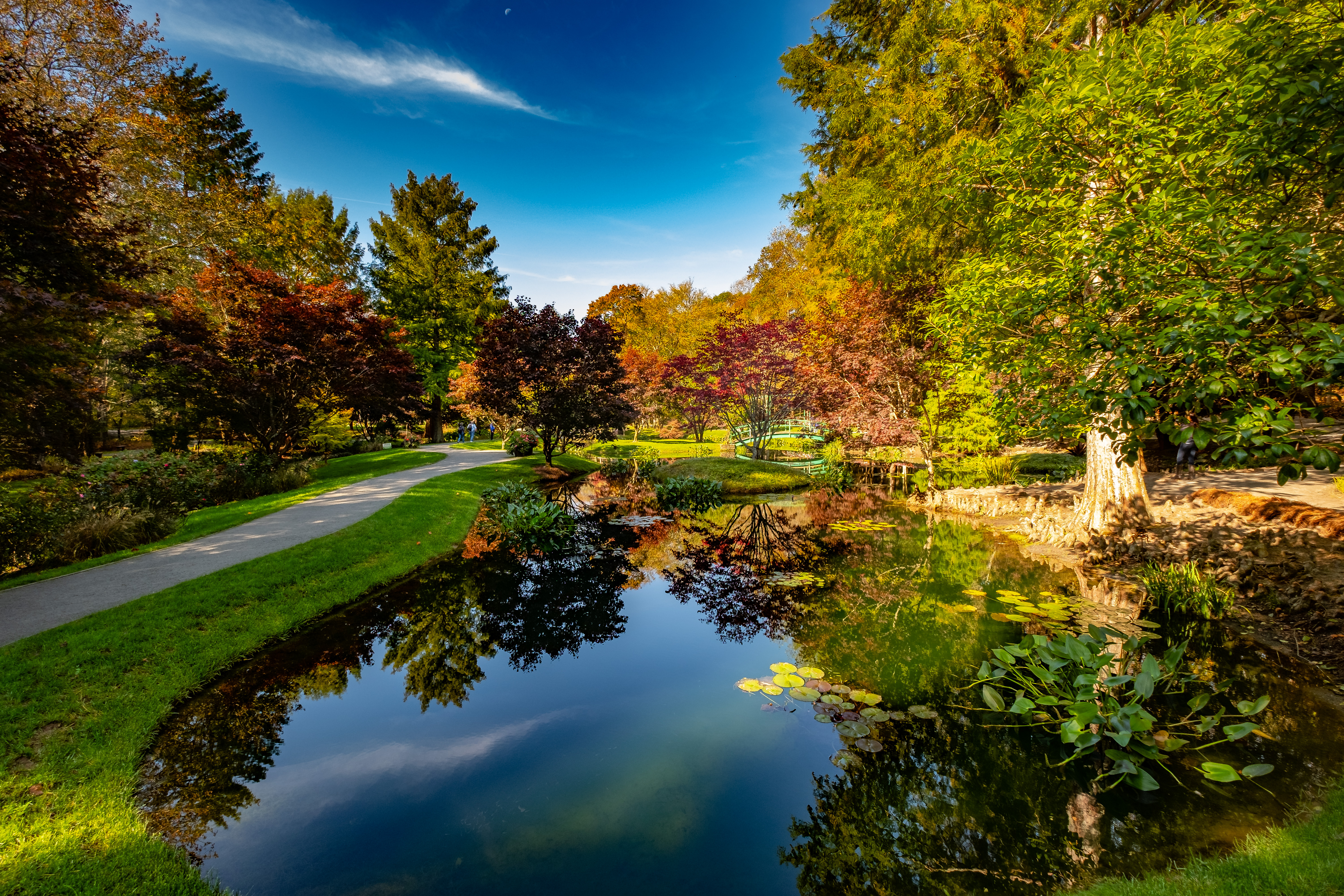 Looking for fall color at Gibbs Gardens