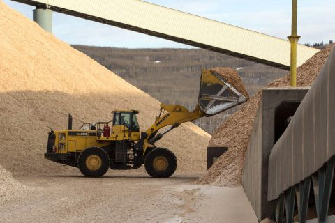 Front loader carrying hardwood chips to a chip pile at the Mercer Peace River pulp mill near Peace River, Alberta, Canada
