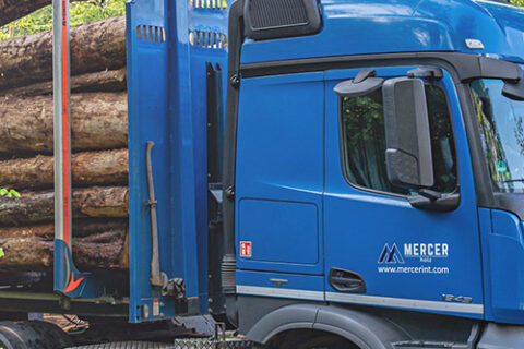 Two Mercer Holz trucks, parked and being loaded with roudnwood, at a work site in the Harz Mountains