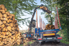 A grappler loading roundwood onto a truck bed at a Mercer Holz work site in the Harz Mountains.