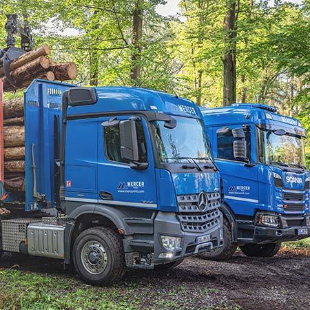Mercer Holz