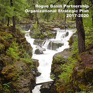 RBP 2017-2020 Strategic Plan