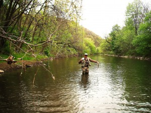 Dry fly water on the lower j (2)