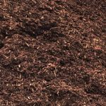 Hemlock Mulch Texture Closeup