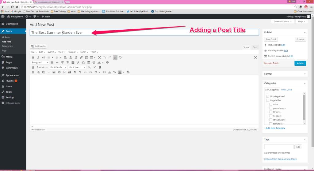 WordPress Add Post Title |Page Title