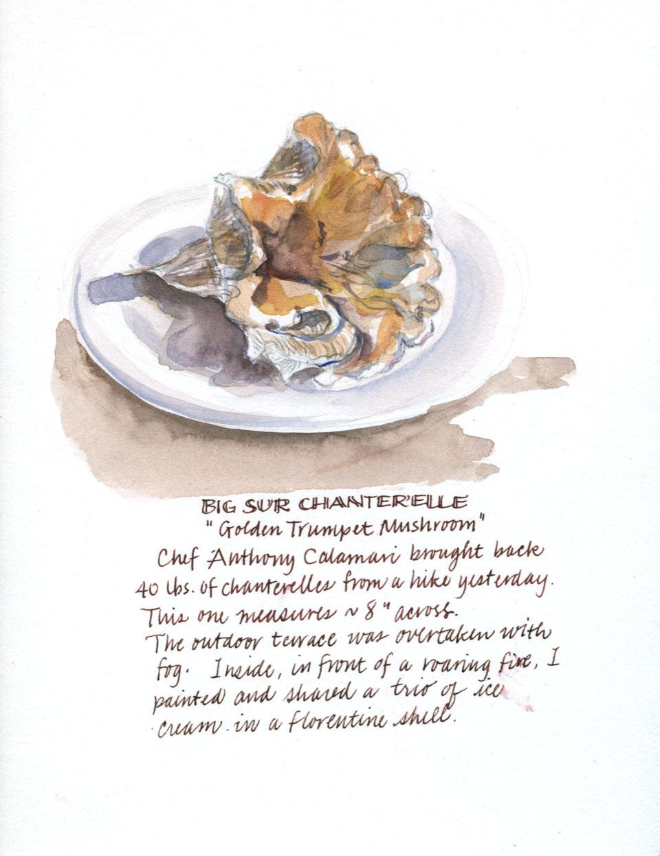 Chanterelle Mushroom watercolor by Janet Takahashi