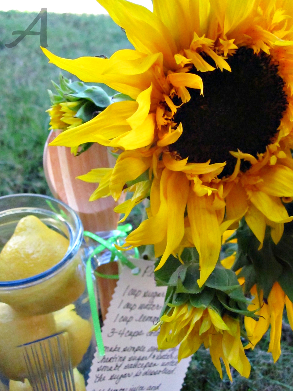 This recipe for the best homemade lemonade is super easy and only requires 3 ingredients! It is the perfect beverage for a party, BBQ or even as part of a hostess gift!   Ask Anna